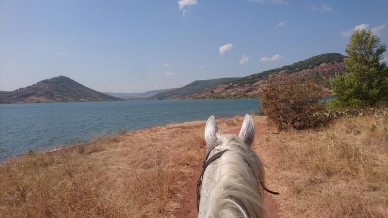 rando cheval 2016 14