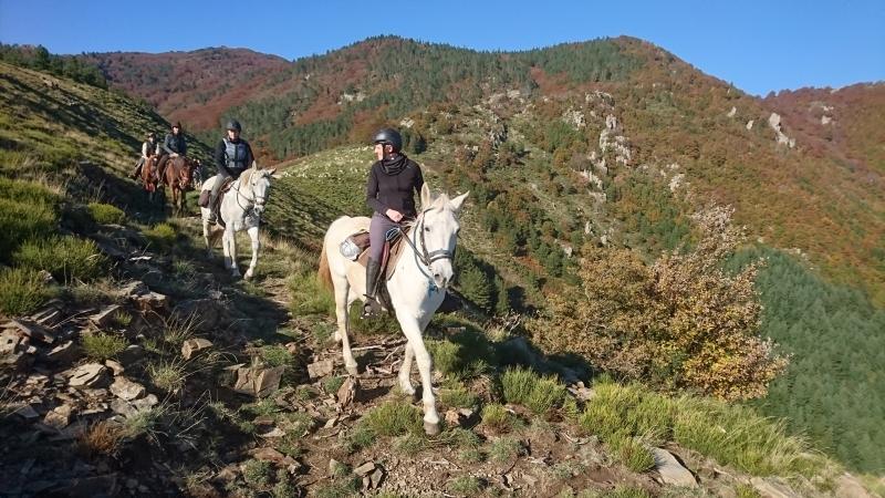 rando cheval 2016 20