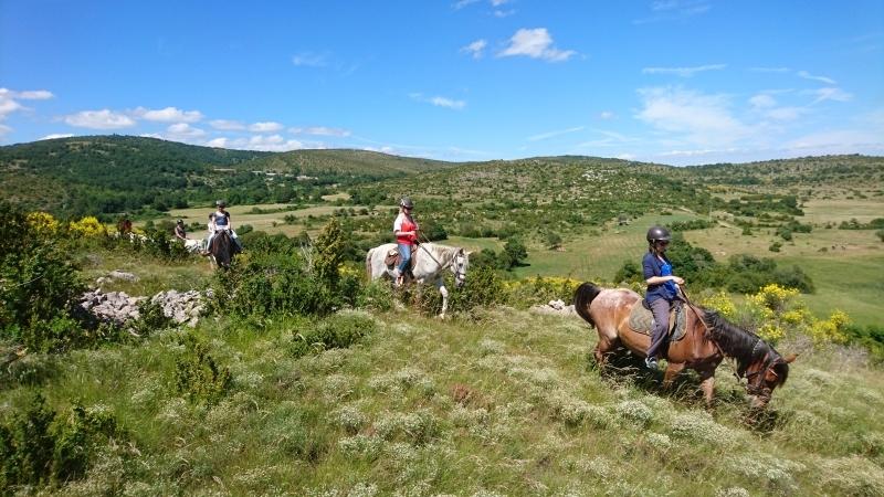 rando cheval 2016 3