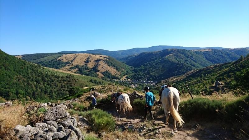 rando cheval 2016 10