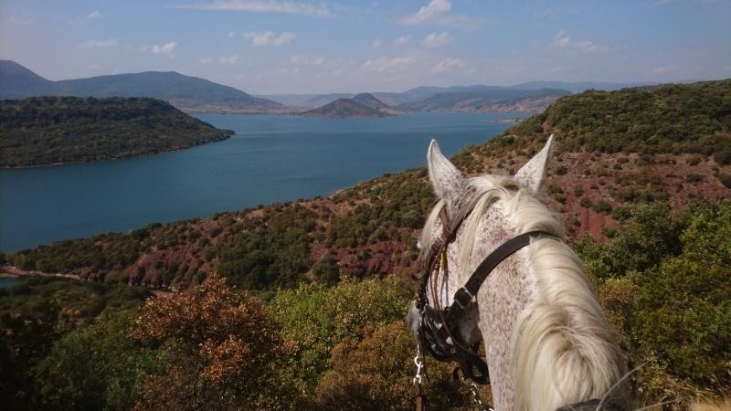 rando cheval 2016 13