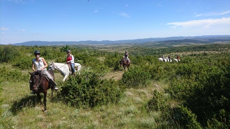 rando cheval 2016 4