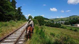randonnee cheval cevennes auvergne 2018  (4)