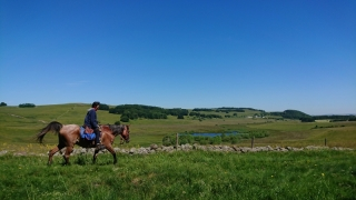 randonnee cheval cevennes auvergne 2018  (7)