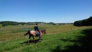 randonnee cheval cevennes auvergne 2018  (8)
