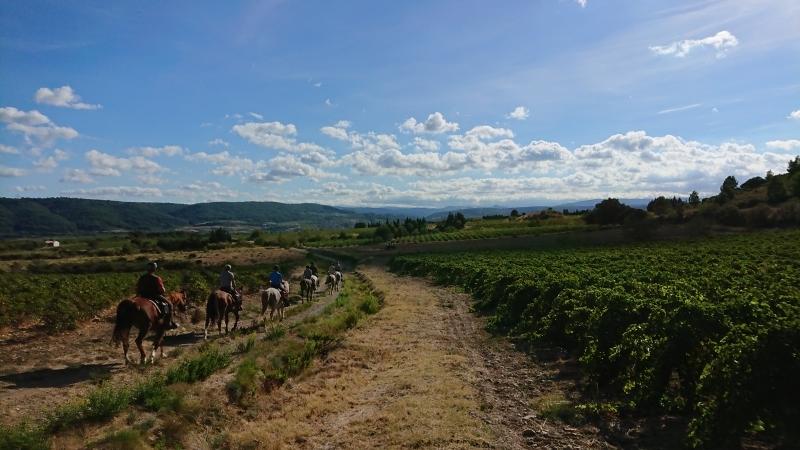 randonnee cheval cevennes canigou 2018  (12)