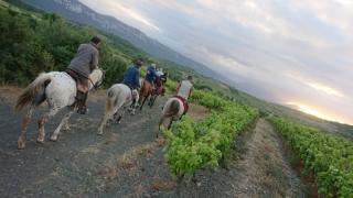 randonnee cheval cevennes canigou 2018  (13)