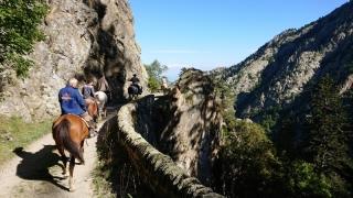 randonnee cheval cevennes canigou 2018  (17)