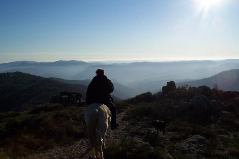 rando-cheval-2006-3