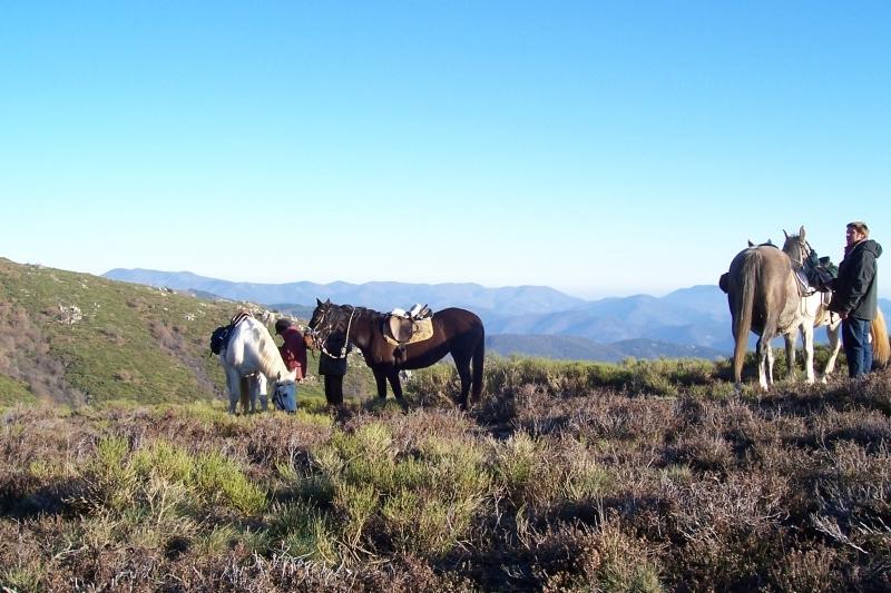 rando-cheval-2006-4