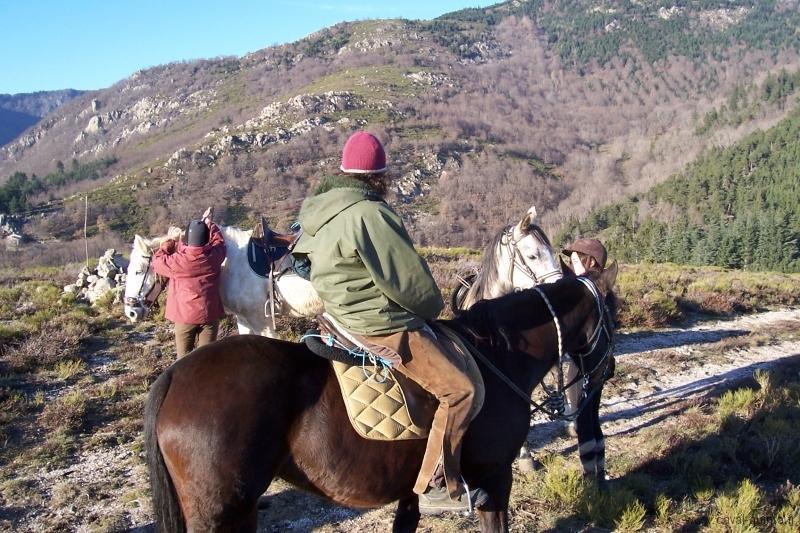 rando-cheval-2006-5
