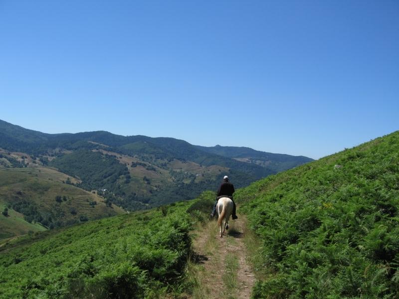 rando-cheval-2007-2