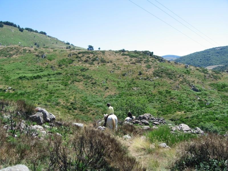 rando-cheval-2007-3