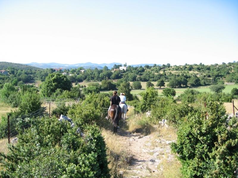 rando-cheval-2007-4