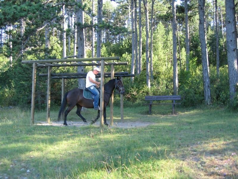 rando-cheval-2007-5