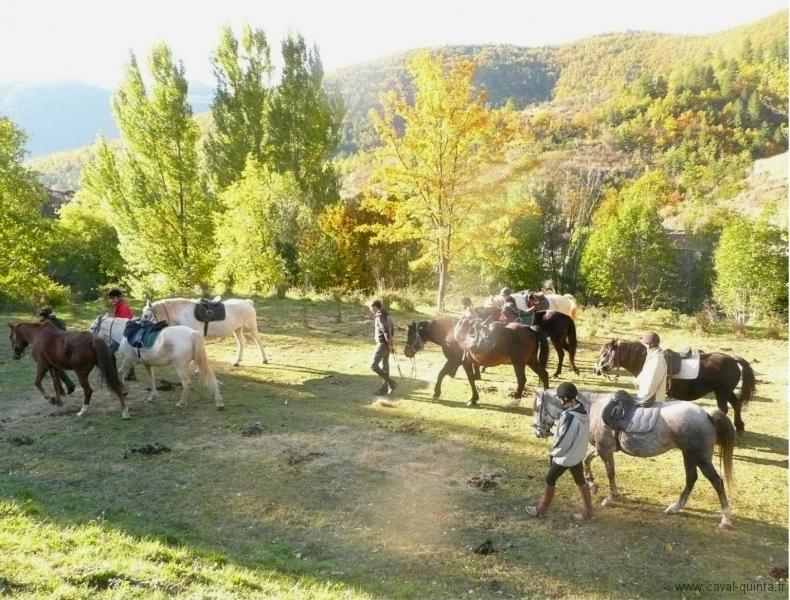 rando-cheval-2007-6