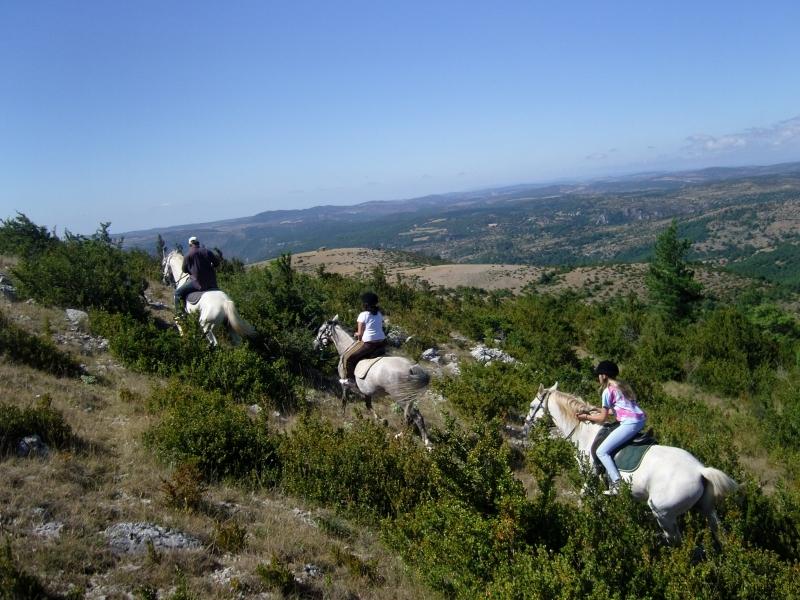 rando-cheval-2008-1