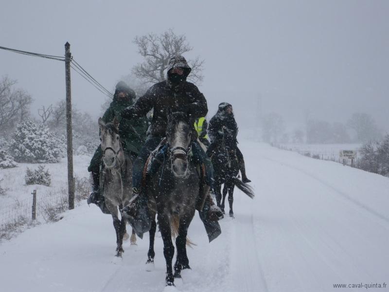 rando-cheval-2008-3
