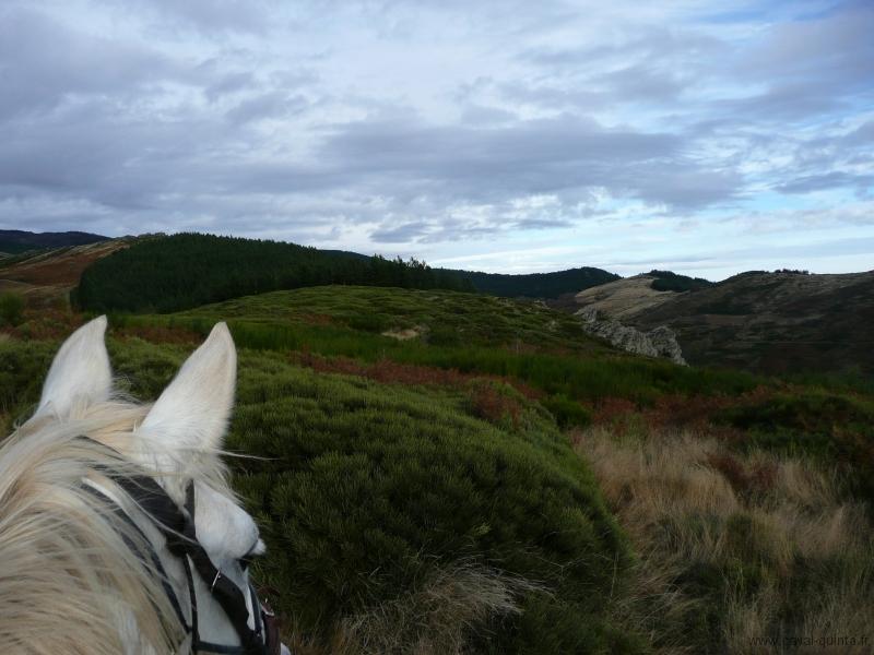 rando-cheval-2008-4