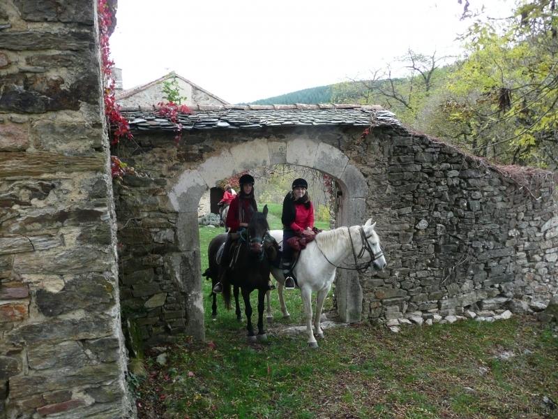 rando-cheval-2008-5