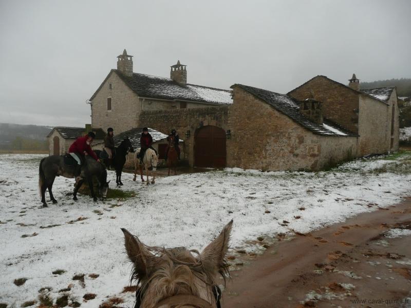 rando-cheval-2008-8