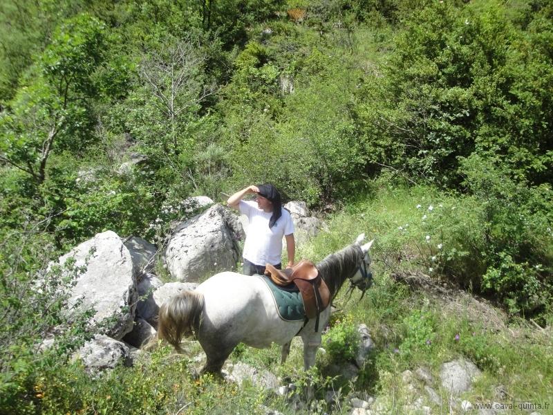rando-cheval-2010-15