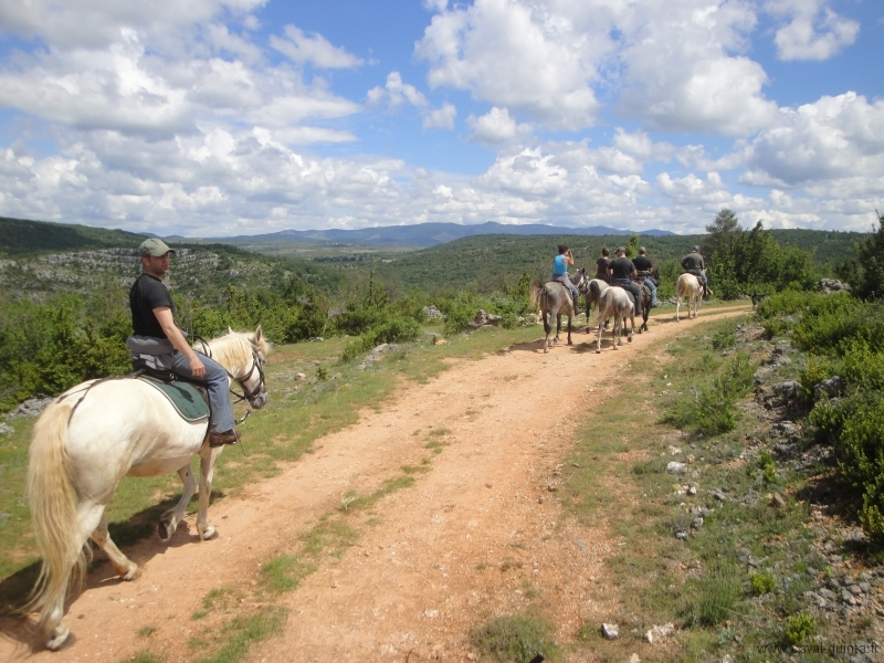 rando-cheval-2010-16