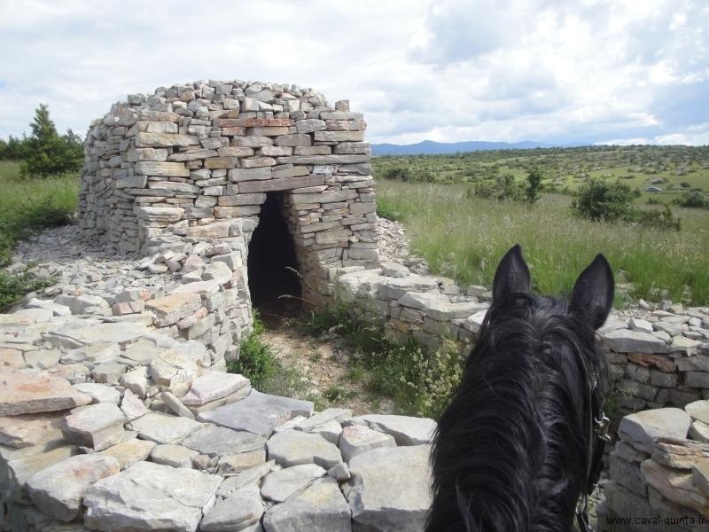 rando-cheval-2010-4