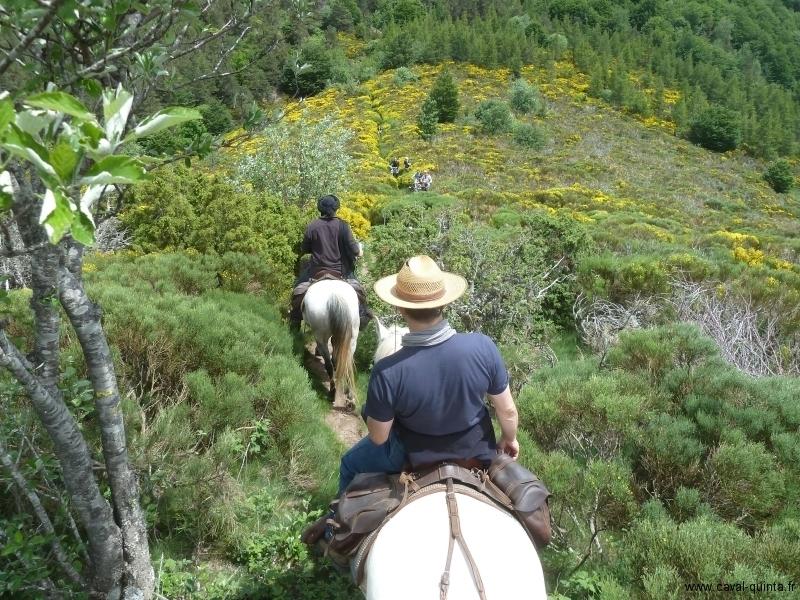 Randonnées à cheval 2012