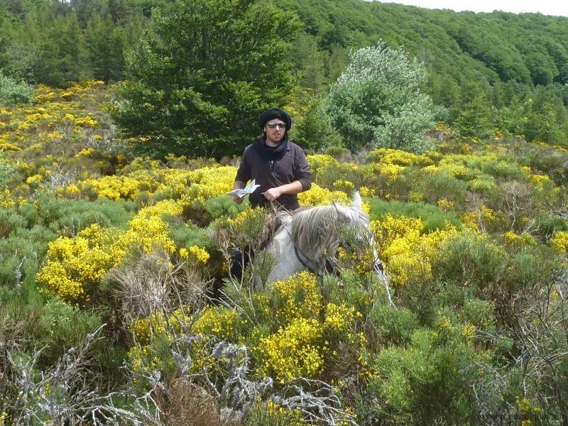 rando-cheval-2012-10
