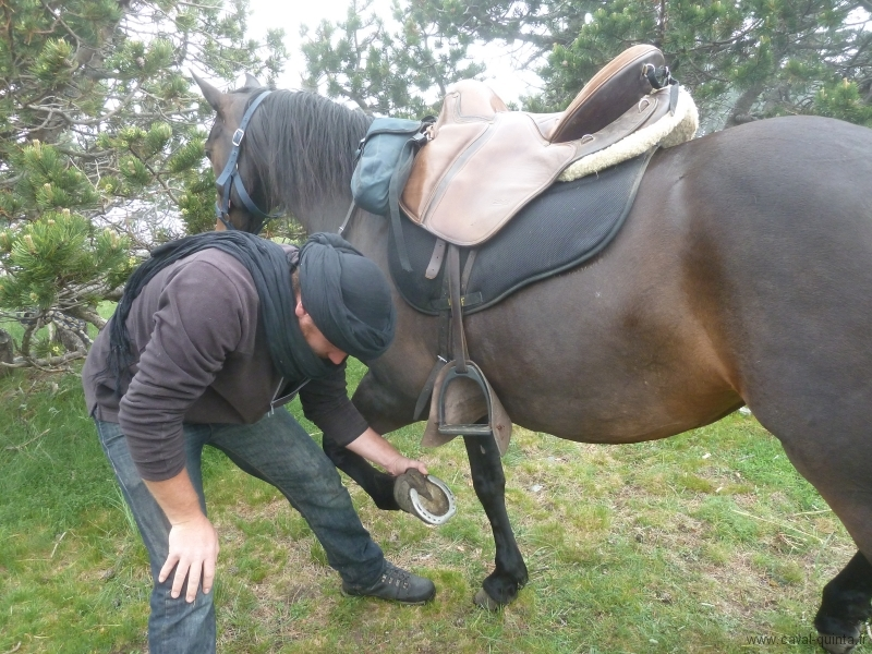 rando-cheval-2012-12