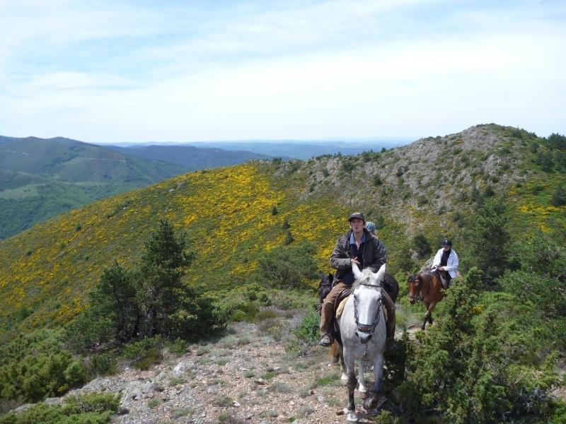rando-cheval-2012-13