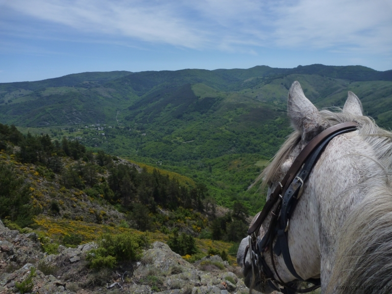 rando-cheval-2012-14