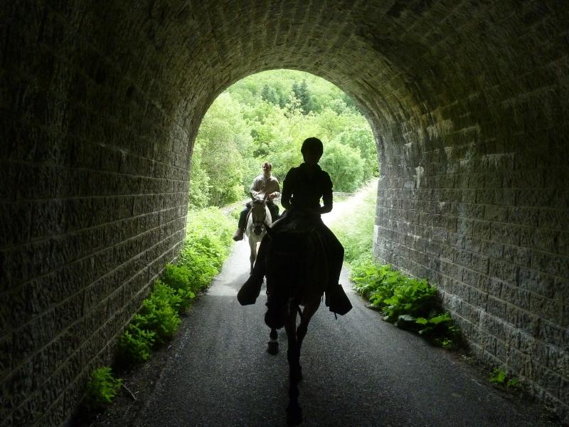 rando-cheval-2012-4