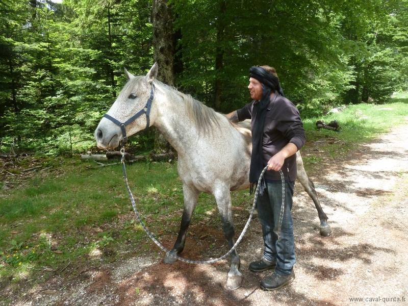 rando-cheval-2012-5