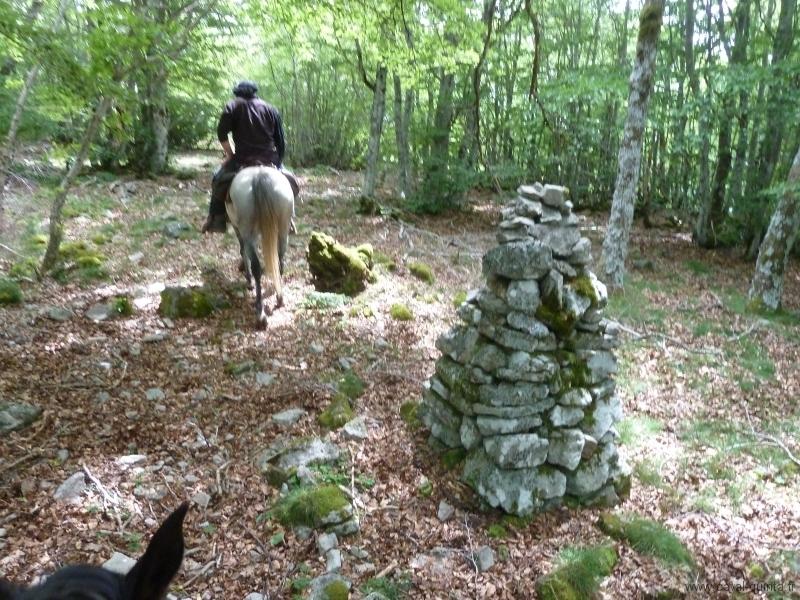 rando-cheval-2012-6