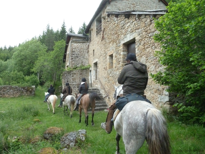 rando-cheval-2012-7