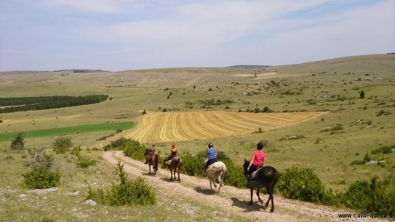 Randonnée à cheval 2013