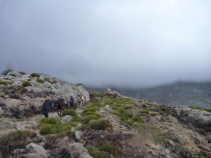 rando-cheval-2013-11
