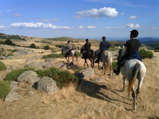 rando-cheval-2015-20