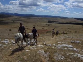 rando-cheval-2015-27
