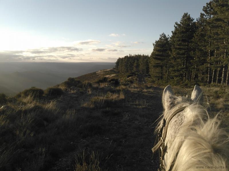 rando-cheval-2015-17