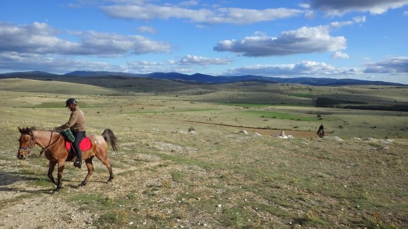 rando-cheval-2015-31