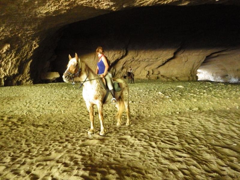 rando-cheval-2015-37