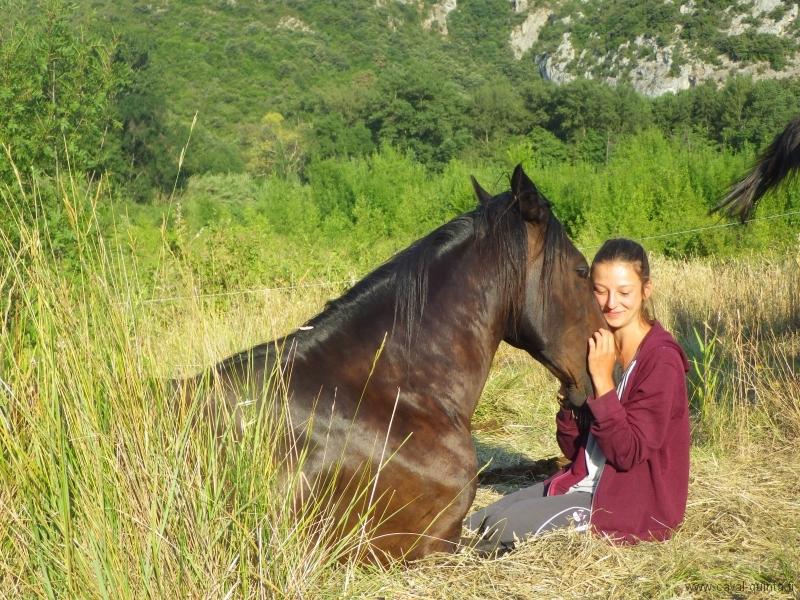 rando-cheval-2015-40