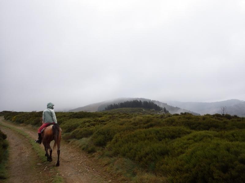 rando-cheval-2015.JPG
