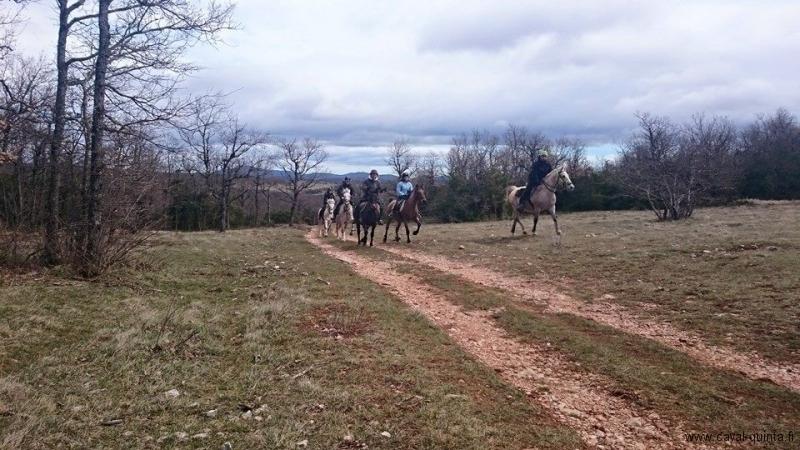 rando cheval cevennes 2015.jpg