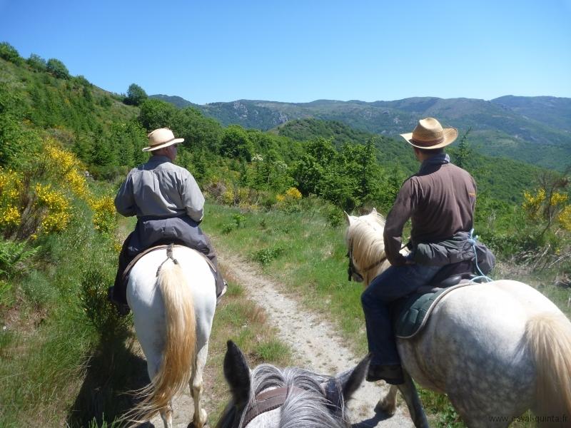 rando-cheval-2011-10