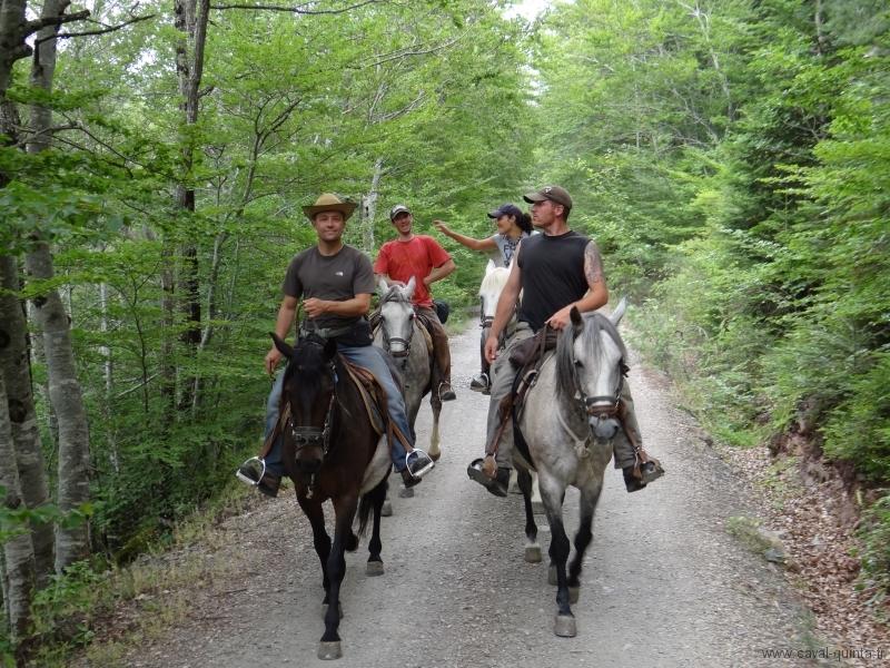 rando-cheval-2011-2