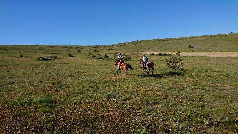 randonnee cheval cevennes auvergne 2018  (2)